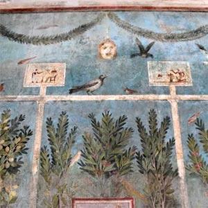 Domus Del Frutteto Pompei Dettaglio.jpg