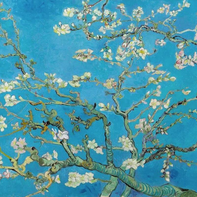 Ramo Di Mandorlo In Fiore Van Gogh